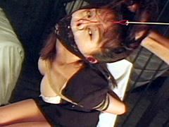 【エロ動画】美畜鼻奴隷のエロ画像