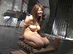 奴隷通信 No.36