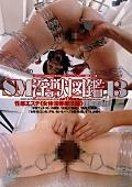 SM淫獣図鑑13