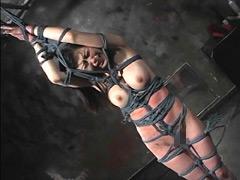 【エロ動画】アルゴラグニア官能14のエロ画像