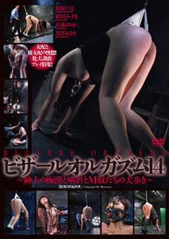 【緒川みずき動画】ビザールオルガズム14-SM