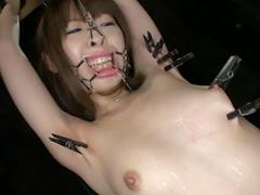 【エロ動画】麗獣保護痴区4 楓乃々花のエロ画像