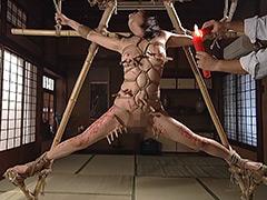 【エロ動画】性獣図鑑オムニバス3のエロ画像