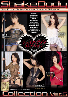 「Shake Body Collection Ver.6」のパッケージ画像