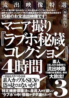 流出映像特選 マニア撮り『ラブホ秘蔵コレクション』4時間3