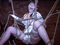 緊縛、放尿、嘔吐、塗糞、中出し。囚われ拘束された女はもう逃げることは出来ない。歪んだ性癖の男によってマズヒスト調教される女は、されるがままの性玩具と化した。サディストに囚われた女に執行される究極の調教!! ※本編中に映像と音声のずれが発生する箇所がありますが、オリジナル・マスターに起因するものです。あらかじめご了承ください。