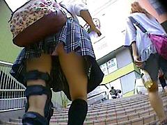 mobup (7)