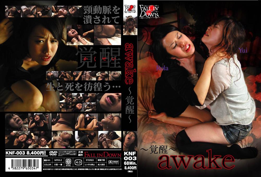 awake 〜覚醒〜のエロ画像