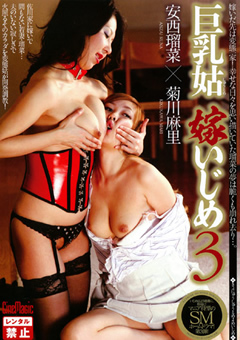 巨乳姑 嫁いじめ3 安西瑠菜 菊川麻里