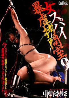 【中野ありさ 拷問】女スパイ暴虐拷問室9-中野ありさ-SM