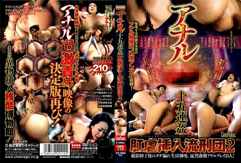 アナル十五連姦 肛虐挿入流刑団2