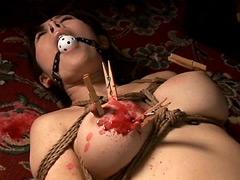 【エロ動画】縛乳6のエロ画像