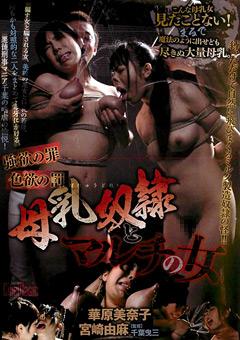 「強欲の罪 色欲の罰 母乳奴隷とマルチの女」のパッケージ画像