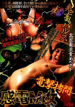 【電撃拷問 動画】鬼畜パルス高圧電流責めベスト-電撃拷問感電M女-SMのダウンロードページへ