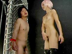 実験工房 筋肉セクサロイド☆ミライとM男
