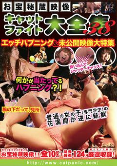 お宝秘蔵映像 キャットファイト大全集38