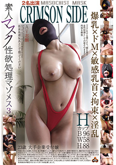 素人マスク性欲処理マゾメス3