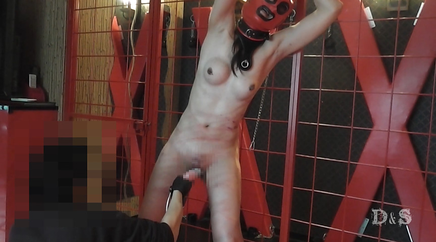 人造人間-憧れの一本鞭 の画像10