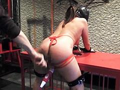 【エロ動画】鞭打ち電マ〜クリも膣もアナルも快楽責めのエロ画像