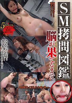 【凌辱動画】三角木馬や正座ブロック乗せ、鞭打ちに小便飲ませ等SM拷問からの3Pセックス