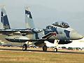 """懐かしい航空祭をもう一度。Series """"AIRSHOW MEMORIES""""第2弾は、2003年12月7日(日)航空自衛隊 新田原基地(宮崎県)にて開催された""""新田原基地航空祭2003""""。新田原基地は、「日本のトップガン」とも形容される航空自衛隊・飛行教導隊、通称""""アグレッサー""""部隊のあることでファイターファンに人気の高い基地だ。雲一つない晴天の下で行われたフライトは、F-15、 F-4をはじめ築城基地からF-1が飛来。救難隊の展示飛行、空挺降下、ブルーインパルスのフライトも実施された。更に第301飛行隊30周年記念塗装の、F-4ファントムによるフライトも行われた。帰投時にフライパスを行った、米海兵隊AV-8BハリアーとF/A-18Dホーネットも収録。エキサイティングなフライトを存分にお楽しみ下さい。"""