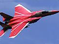 今年の注目は、303/306飛行隊による航空自衛隊