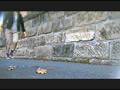 お嬢様がトンボとカタツムリを踏みにじって歩き去る!