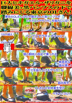 巨大ヒキガエル・ザリガニを脚線美+黒パンプスの下で踏みにじる東京のOLさん!