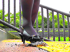 クラッシュ:踏みにじられる ヒキガエルとアマガエル!