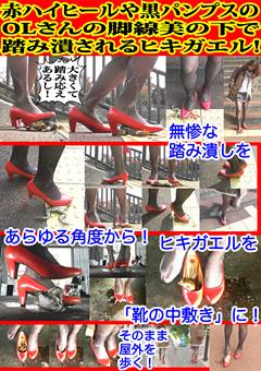 赤ハイヒールや黒パンプスのOLさんの脚線美の下で踏み潰されるヒキガエル!