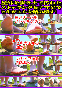 「土で汚れたストッキング&ナマ足でヒキガエルを踏み潰す」のサンプル画像