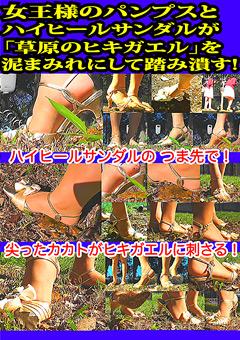 女王様のパンプスとハイヒールサンダルが「草原のヒキガエル」を泥まみれにして踏み潰す!