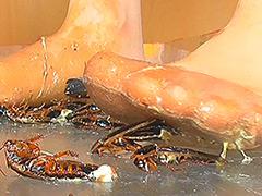 クラッシュ:瀬川みおり様が生ストッキングで巨大ゴキブリを踏み潰す