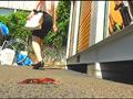 普通の女性・小百合さんがザリガニ・ゴキブリ・魚を踏む サンプル画像0006