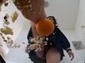 メロンパンと完熟みかんを素足で粉砕する子豚ちゃん