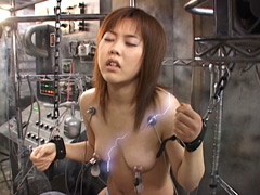 【エロ動画】電気ショック 第1巻のエロ画像