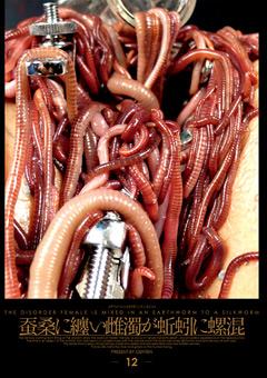 蚕桑に纏い雌濁が蚯蚓に螺混(松永香織 出演の凌辱系動画)