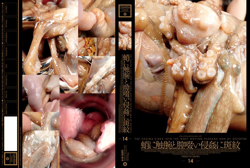 蛸に触腕と膣啜い侵姦に斑紋