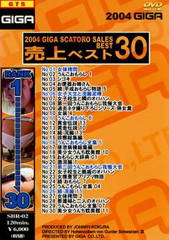 2004ギガスカトロ売上ベスト30