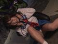 ヒロイン陥落Vol.116 美少女戦士セーラーマーメイド