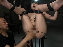 Ma○ko Device BondageX 鉄拘束マ○コ拷問 知花みく