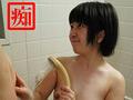 shirotodoga.com