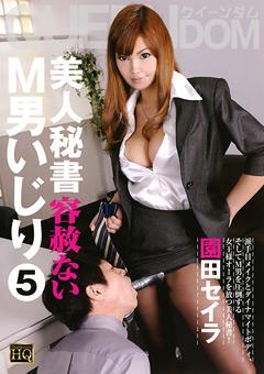 美人秘書 容赦ないM男いじり5 園田セイラ