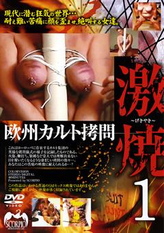 欧州カルト拷問 激焼1