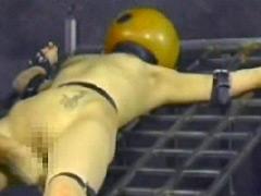 【エロ動画】変態標本2のSM凌辱エロ画像