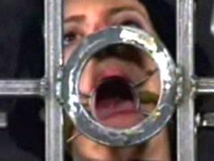 【エロ動画】鉄格子 蜘蛛の巣吊 顔面拷問のエロ画像