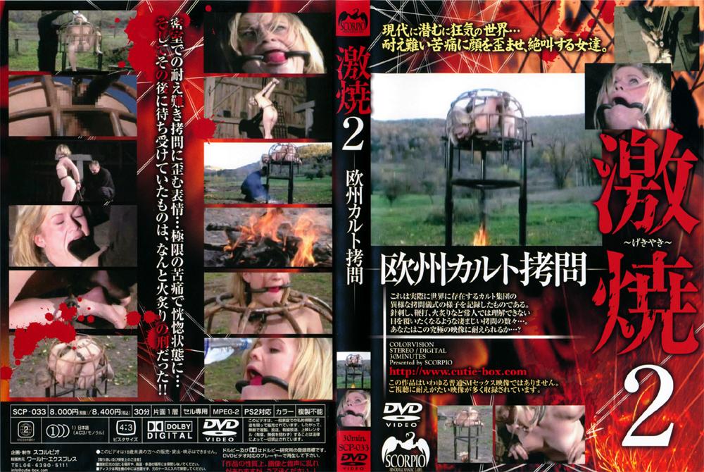 欧州カルト拷問 激焼2のエロ画像