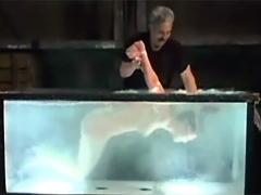 【エロ動画】ゼンマイ仕掛けのグッピーのエロ画像