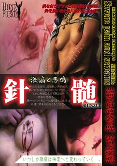 針髄 SHINZUI