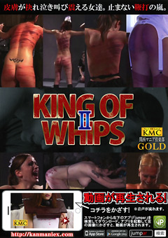 KING OF WHIPS2